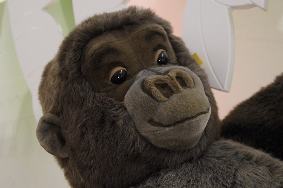 Kostenloses Foto Gesicht Gorilla Affe Kuscheltier Kostenloses Bild Auf Pixabay 545667