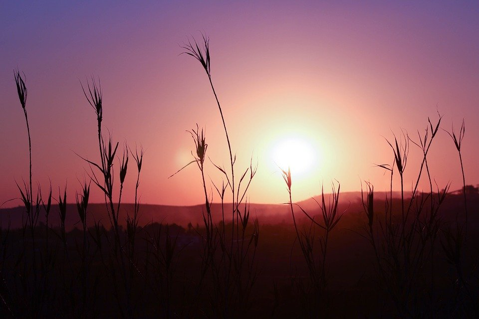 Free photo: Sunset, Silhouette, Landscape