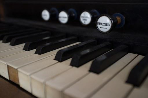 Harmonium, Organ, Register, Keys, Manual