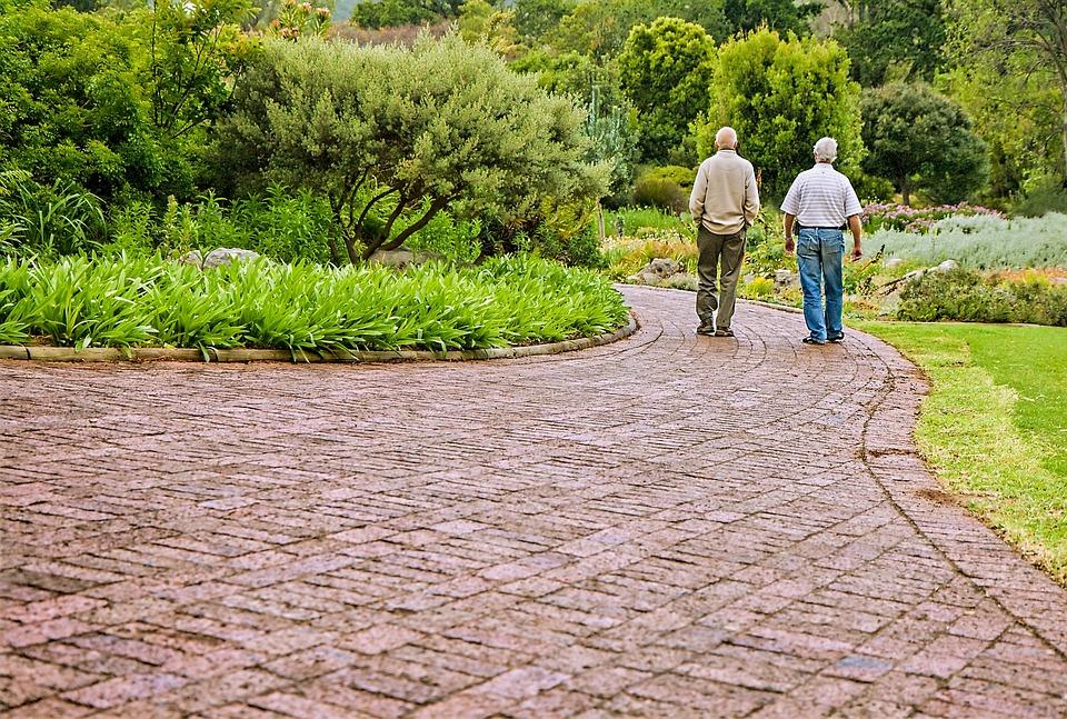 古くからの友人, 会話, 人の話, 昔の人々, 友情, チャット, 話, 徒歩, 思い出, 記憶, 散歩