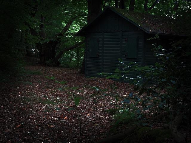 home hut forest hunting free photo on pixabay. Black Bedroom Furniture Sets. Home Design Ideas
