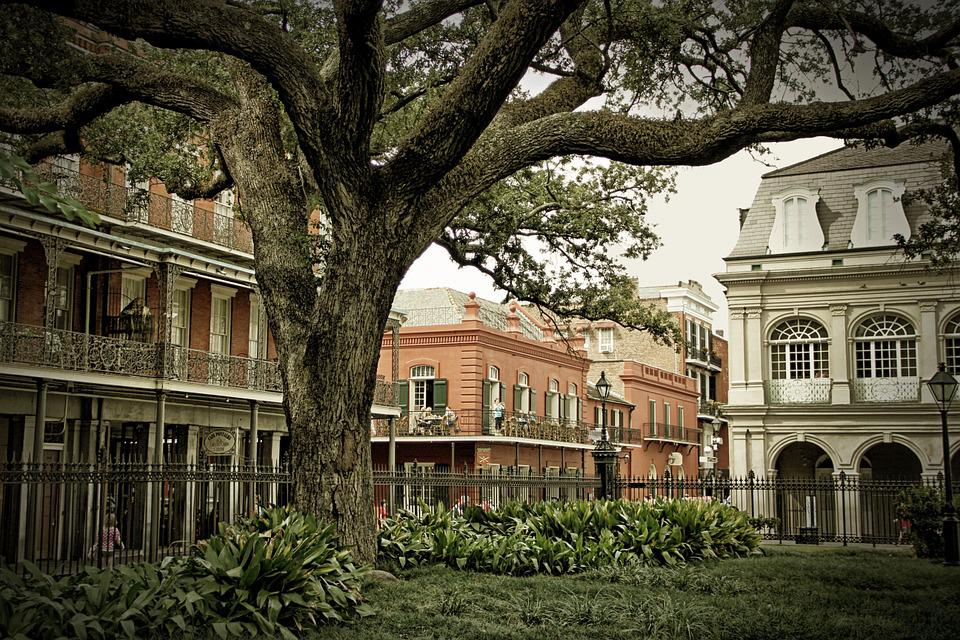 Free Photo French Quarter New Orleans Tree Free Image