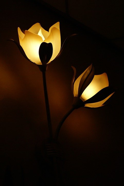 Free Photo Lamp Flower Light Lamps Free Image On
