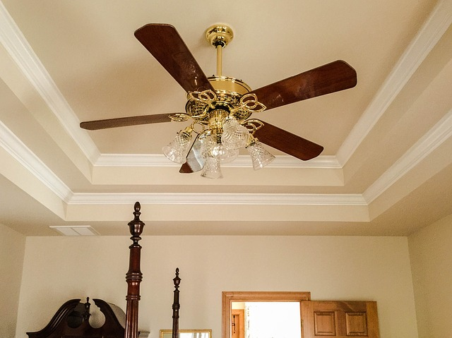 Ceiling Fan Tray Crown 183 Free Photo On Pixabay