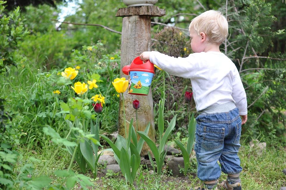 Child, Kid, Garden, Watering, Flower, Boy