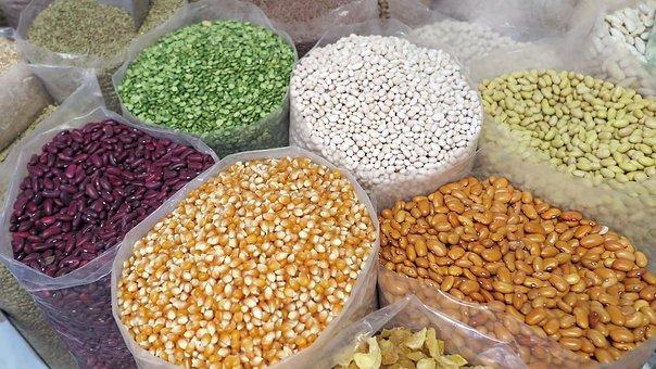Korn, Mais, Bohnen, Saatgut, Natürliche