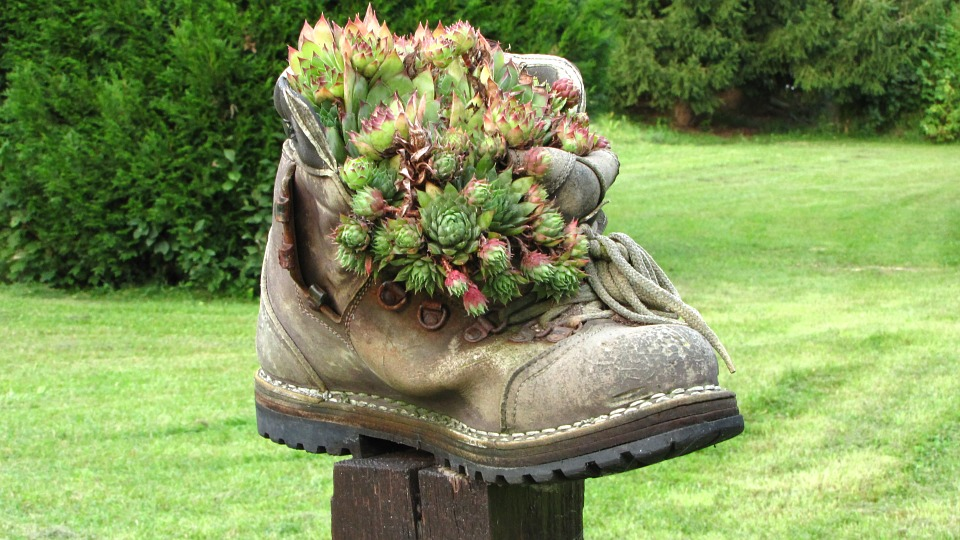 Kostenloses foto schuh pflanzen deko alter schuh for Pflanzen deko garten