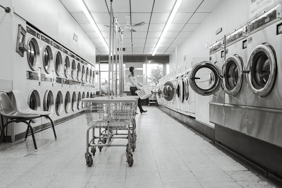 ランドリー サルーン, ランドリー, 人, 洗濯機, クリーン, 洗浄, 家事, 服, 家畜化された