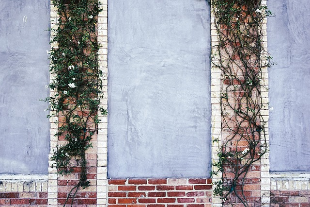 free photo  wall  bricks  decoration  ivy
