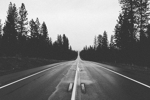 Road, Straight, Future, Way, Forest, Sad