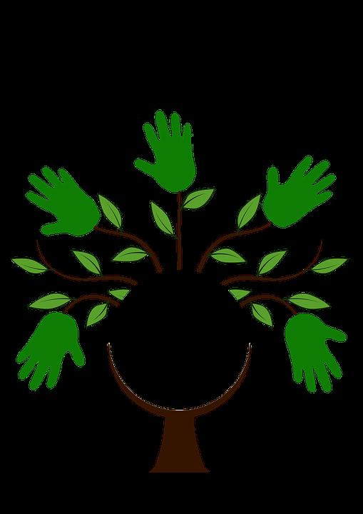 pohon estetis log gambar gratis di pixabay pohon estetis log gambar gratis di