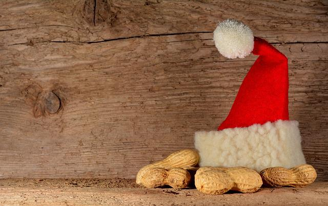 Santa Hat Peanuts Wood 183 Free Photo On Pixabay