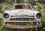car, scrap, moss