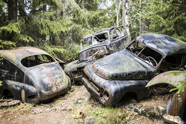 Car Scrap Moss 183 Free Photo On Pixabay