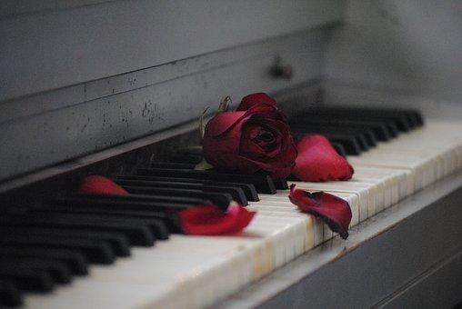 ピアノ, ローズ, 赤, 花, 愛, ロマンス, ホワイト, 関係, 日付