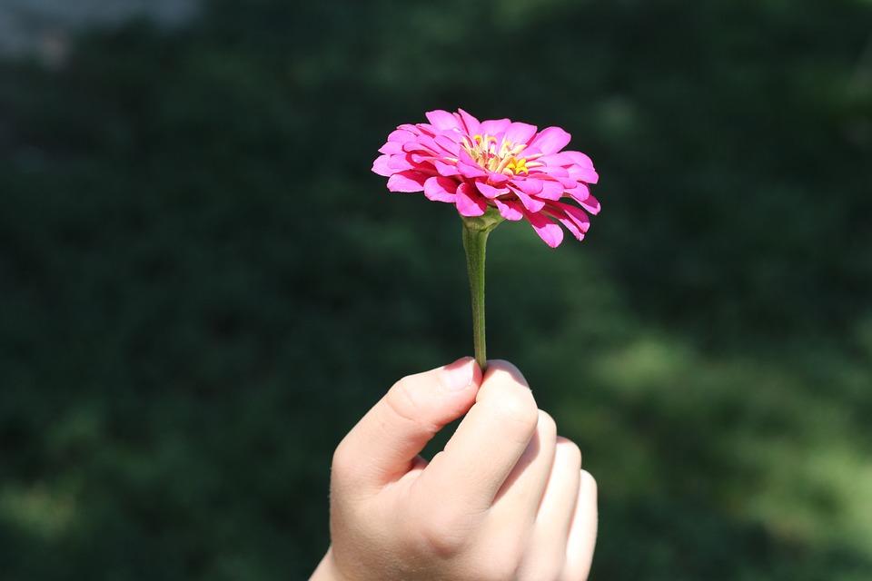 Hand Holding Flowers Craft