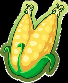 Corn, Maize, Vegetables, Food, Harvest