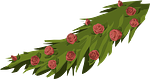 flowers, roses, floral