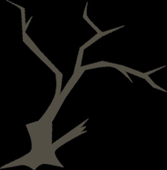 Árbol Ramas Naturaleza · Gráficos vectoriales gratis en Pixabay