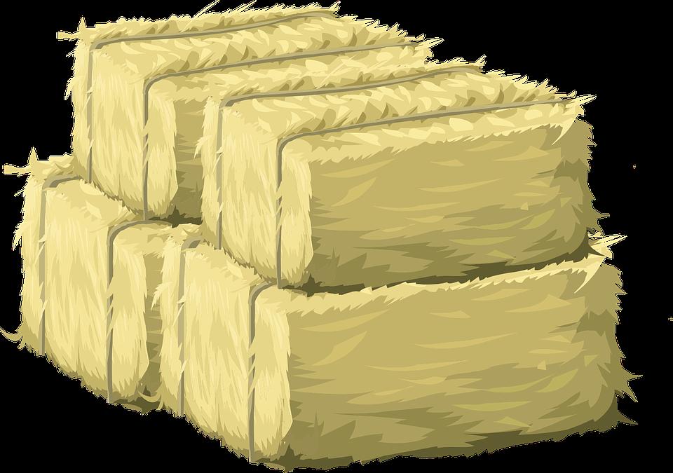 hay bales haystack free vector graphic on pixabay rh pixabay com Haystack Drawing Haystack Pictures to Color