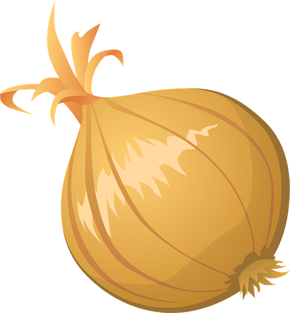 onion vegetable food 183 free vector graphic on pixabay