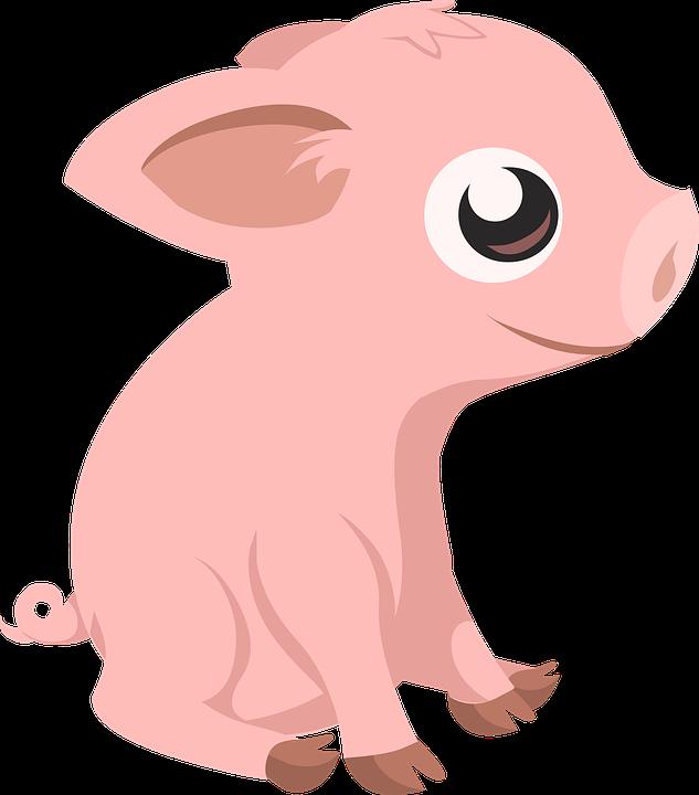 Schwein, Ferkel, Bauernhof, Tier, Säugetier