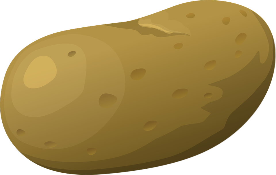 Kartoffel Bilder Kostenlos kartoffel gemüse roh kostenlose vektorgrafik auf pixabay