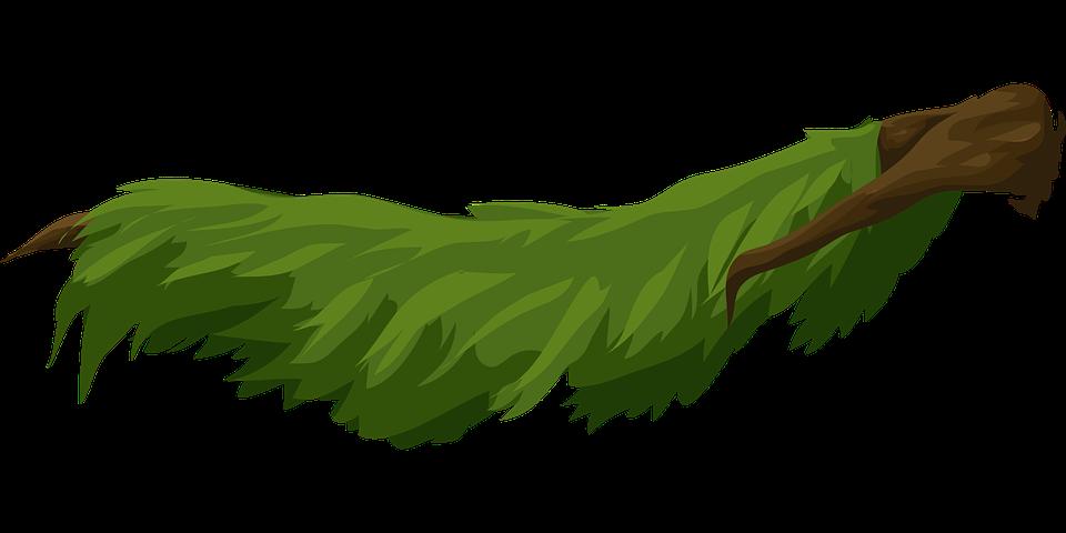 Árboles Ramas Hojas · Gráficos vectoriales gratis en Pixabay