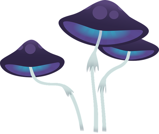 Mushroom Cap Fungi 183 Free Vector Graphic On Pixabay