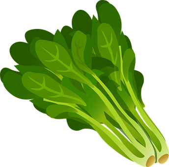 Green, Leafy, Vegetables, Leaves