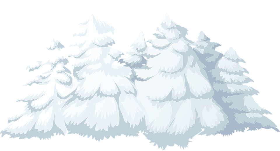 Trees, Snow, Snowfall, Covered, Winter, Christmas, Xmas