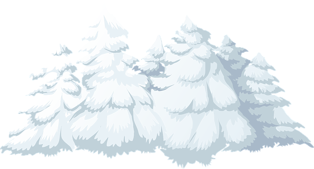 Trees, Snow, Snowfall, Covered, Winter