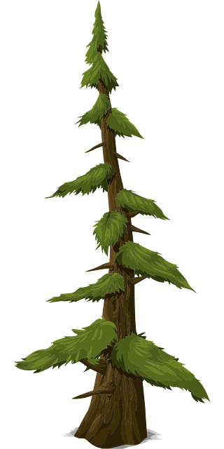 Fir Tree Trunk · Free vector graphic on Pixabay