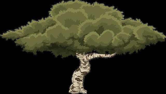 ต้นไม้ ศิลปะ งาน