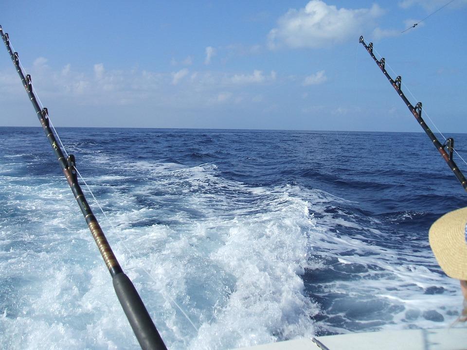 Free photo fishing deep sea fishing hawaii free image for Deep sea fishing poles