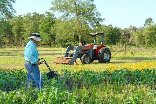 Farm, Farmer, Spring, Garden