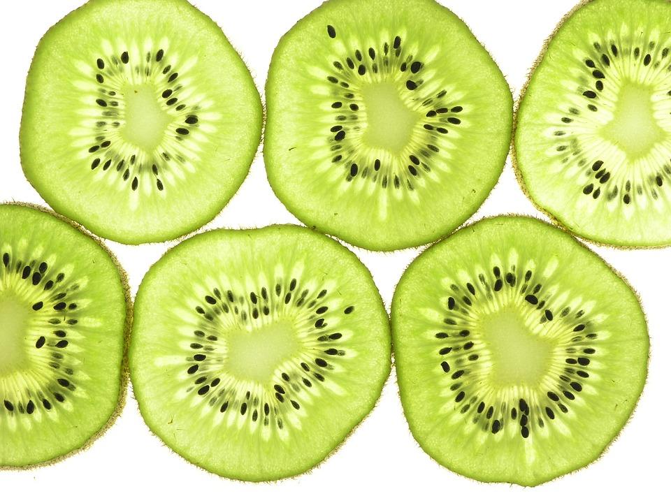 free photo kiwi fruit slices thin back lit free