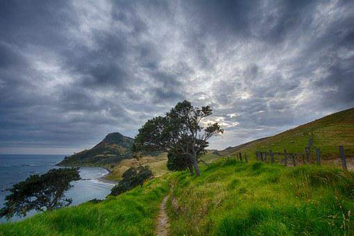 New Zealand, Path, Trail, Corum Andel