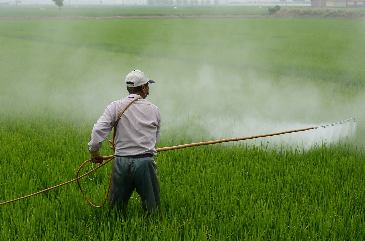 Pesticide Exposure and Boys with ADD