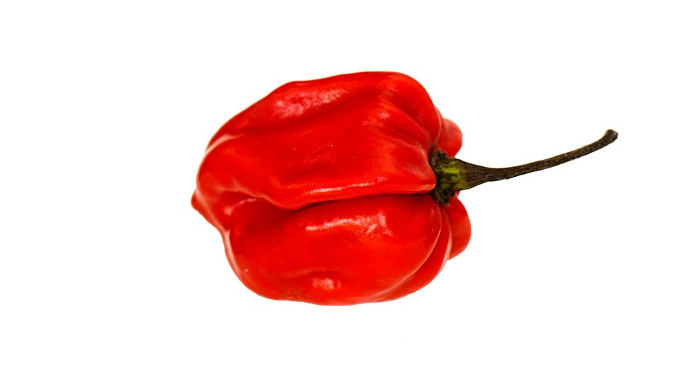 Kırmızı Biber Sebze Pixabayde ücretsiz Fotoğraf