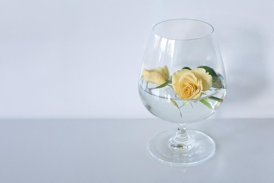 Rose Vergänglichkeit Gelb · Kostenloses Foto auf Pixabay
