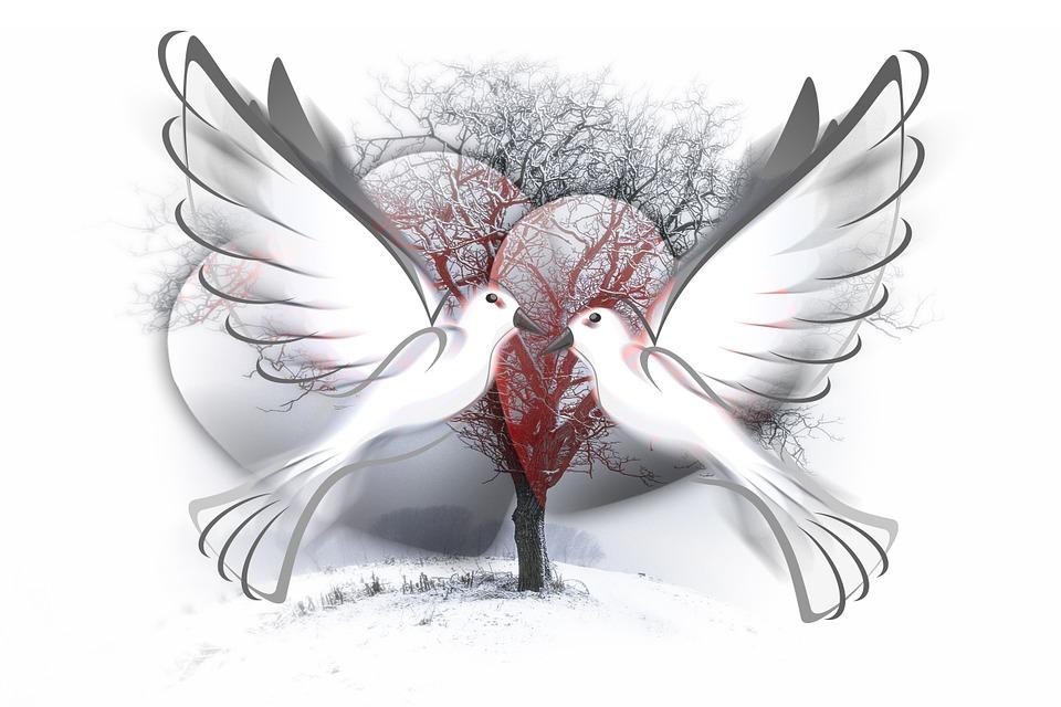 Extrêmement Free illustration: Heart, Doves, Love, Romance - Free Image on  OI48