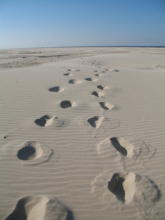 Kostenloses foto strand spuren im sand meer - Immagini di spongebob e sabbia ...