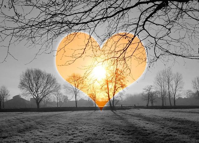 gratis foto hart liefde zonsopgang koud gratis
