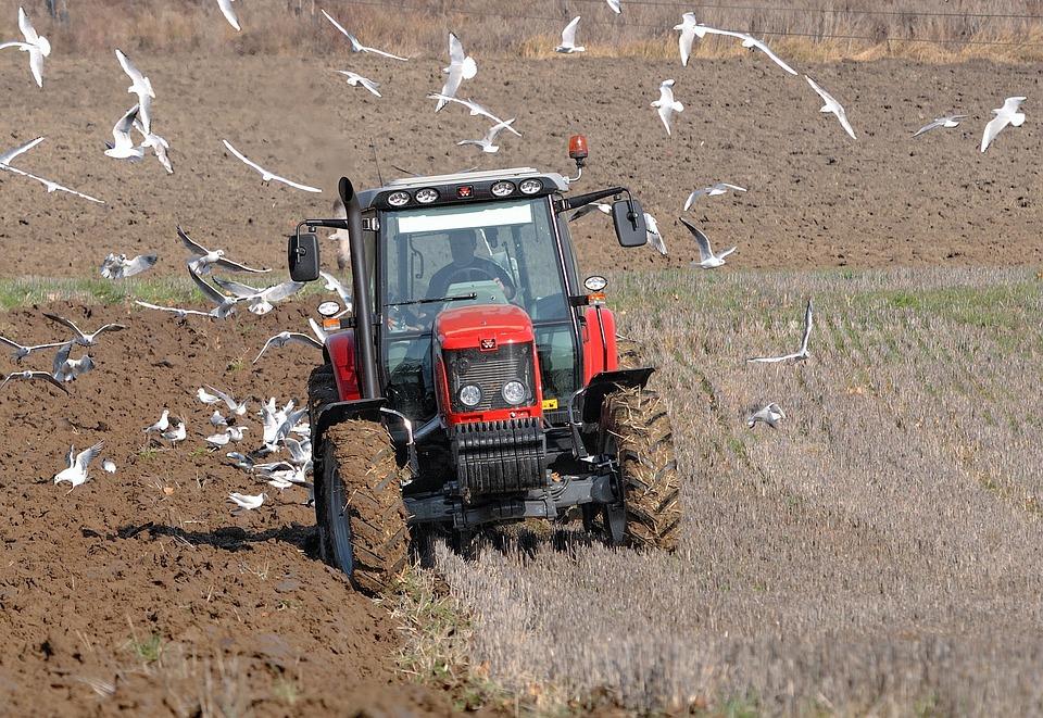 """Résultat de recherche d'images pour """"labour tracteur"""""""