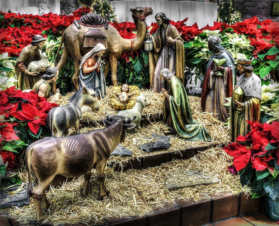 성탄절, 관리자, 크리스마스, 예수님, 종교, 출생, 그리스도, 메리, 요셉, 장면, 기독교, 교회