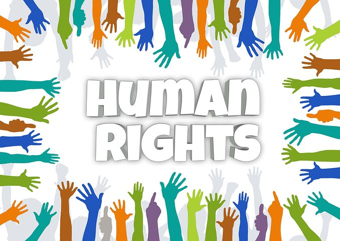 Fundamental Human Rights: Definition & Types