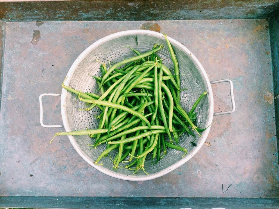 Beans, Green Beans, String Beans, Vegetable, Green