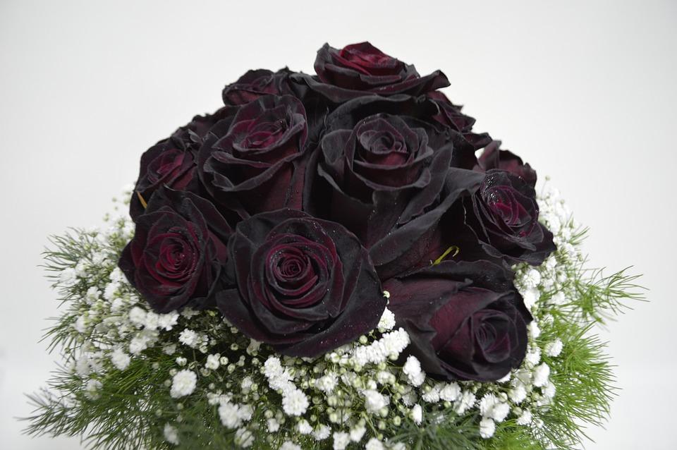 kostenloses foto brautstrauss schwarze rosen kostenloses bild auf pixabay 600207. Black Bedroom Furniture Sets. Home Design Ideas
