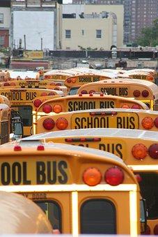 School Bus, America, Vehicles, School